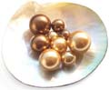 brown pearls in any sizes