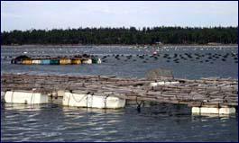 freshwater farm