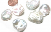 big pearls in any shape, from baroque, coin, keshi, button and round pearls