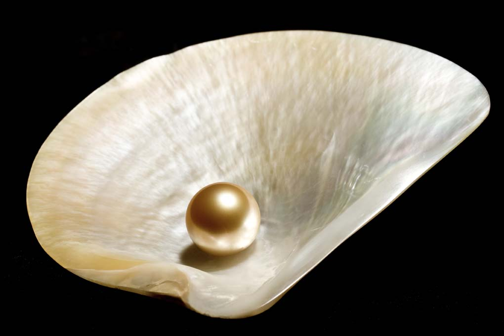 Freshwater Pearls Process & Production