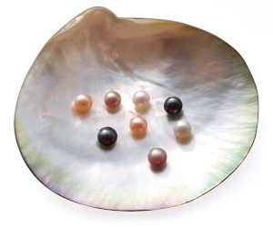 White, Pink, Mauve and Black 5-6mm AAA Quality Button Pearl, Half Drilled