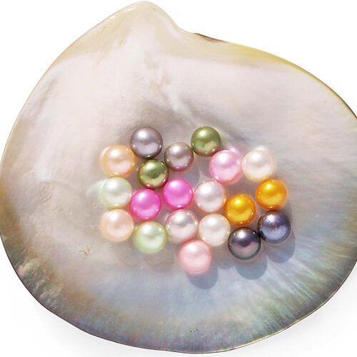 Pink, Mauve, Black, Baby Pink, Peacock Green, Grey, Chocolate, Hot Pink, Gold and Light Green 6-7mm Half-Drilled AA Button Pearl