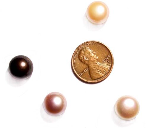 White, Pink, Mauve and Black 8-9mm AAA Quality Button Pearl, Half Drilled
