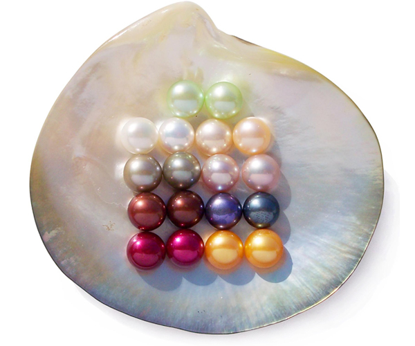Light Green, White, Grey, Chocolate, Cranberry, Pink, Mauve, Black and Gold 8-9mm AA Quality Loose Button Pearls, Half Drilled