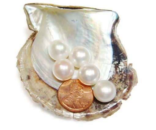 White 12-13mm AAA Quality Button Pearl, Half Drilled