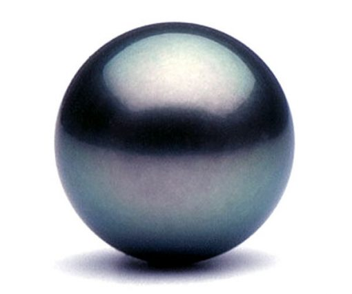 Large Tahitian Peacock Black Single Pearl, Un-drilled or Half-Drilled