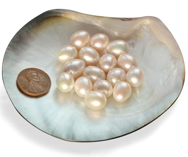 White Drop Pearls Sold by Ounce
