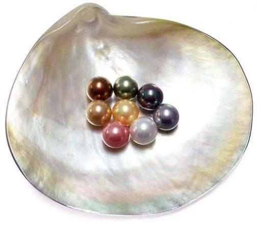 Chocolate, Peacock Green, Tahitian Black, Grey, Silver Grey, Lavender, Dark Golden 8mm Round AAAA SSS Pearls, Half Drilled