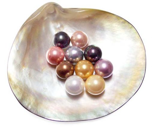 White, Pale Pink, Mauve, Peacock Black, Gold, Champagne, Grey, Chocolate, Peacock Green and Tahitian Grey 10mm Round AAAA SSS Pearl, Half Drilled