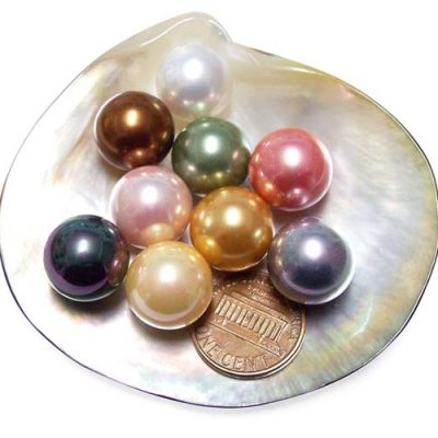 White, Peacock Black, Gold, Grey, Peacock Green, Rose Pink, Pale Pink, Chocolate and Tahitian Black 14mm Round AAAA SSS Pearl, Half Drilled