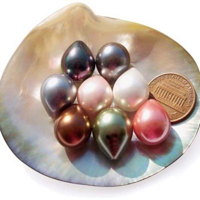 Grey, Black, Pink, Chocolate, White, Baby Pink and Peacock Green 13x16mm Drop Shaped SSS Pearl, Half Drilled