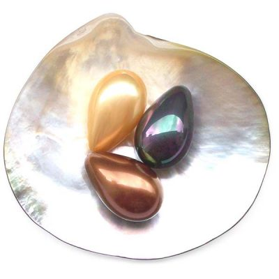 Pink, Black and Chocolate 16x25mm Drop Shaped Southsea Shell Pearl, Half Drilled