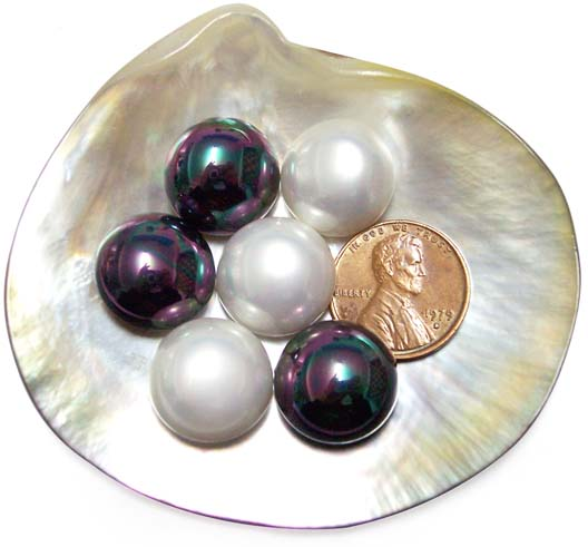 Black and White 14mm Mabe Shaped Southsea Shell Pearls, Half-drilled