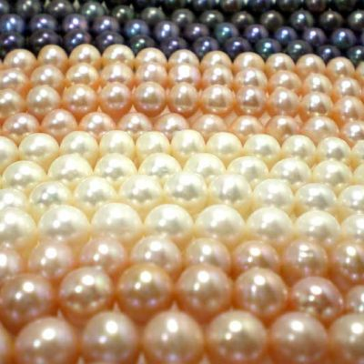 White, Pink, Lavender and Black 8-9mm Round Pearl Strand