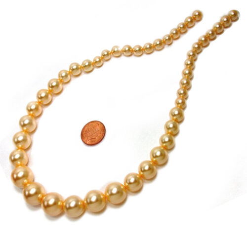Graduated Golden Southsea Shell Pearls on Loose Strands