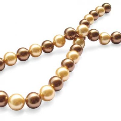 Champagne/Chocolate 12mm Southsea Shell Pearl Strand