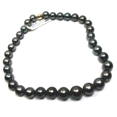 12-14mm Round Black Tahitian South Sea Pearl Necklace 14KY Gold Clasp