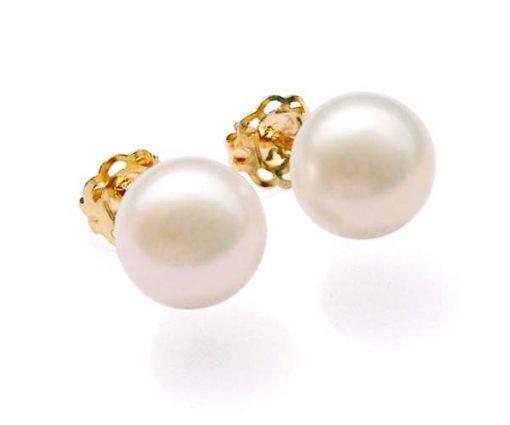 White 6-6.5mm AAA Pearl Earrings, 14K YG