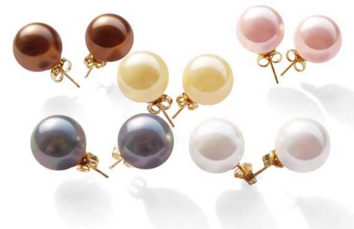 Chocolate, Champagne, Pale Pink, Grey and White 10mm or 12mm Southsea Shell Pearl Stud Earrings in 14k YG