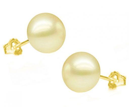 10 - 10.5mm Sized Pearl Earrings in 14k Yellow Gold