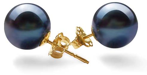 Black 8-8.5mm AAA Round Pearl Earrings, 14k YG