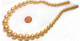 shell pearls graduated