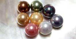12m Shell Pearl Half Drilled